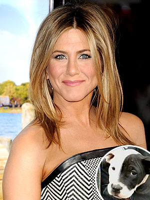 Jennifer Aniston radeloos